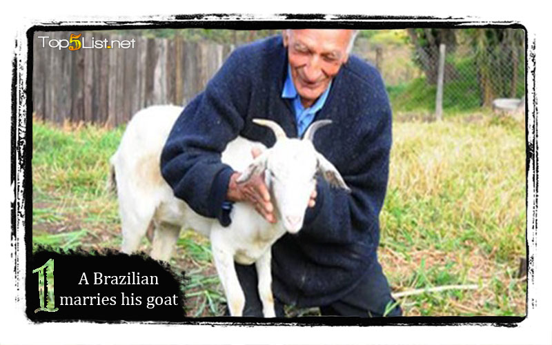 A Brazilian marries his goat